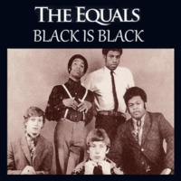 The Equals Black Is Black