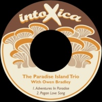 The Paradise Island Trio&Owen Bradley Adventures in Paradise
