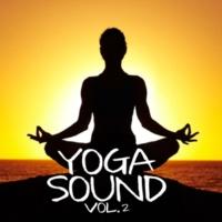 NMR Digital Yoga Sound, Vol. 2