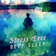 Deep Sleep & Deep Sleep Meditation Stress Free Deep Sleep