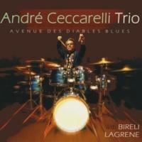 André Ceccarelli Trio Avenue des diables blues (feat. Biréli Lagrène & Joey DeFrancesco)