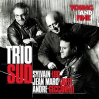 Trio Sud Young and Fine (feat. Sylvain Luc, Jean-Marc Jafet & André Ceccarelli)