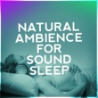 Various Artists Natural Ambience for Sound Sleep