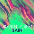 Rain Sounds Ambience Ambient Calm: Rain
