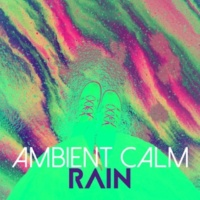 Rain Sounds Ambience Wet Weather