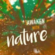 Healing Sounds for Deep Sleep and Relaxation Awaken with Nature