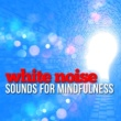 Sounds of Nature White Noise for Mindfulness White Noise: Sounds for Mindfulness