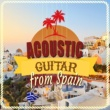 The Acoustic Guitar Troubadours,Acoustic Guitars&Acoustic Spanish Guitar Acoustic Guitar from Spain