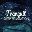 Deep Sleep Relaxation Tranquil Sleep Relaxation
