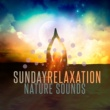 Meditate to Sounds of Nature Sunday Relaxation: Nature Sounds