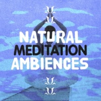 Mediation Sounds of Nature Natural Waters
