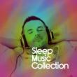 Deep Sleep Music Maestro The Sleep Music Collection