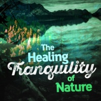 The Healing Sounds of Nature Water Changes