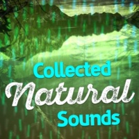 Nature Sound Collection Water Wheel