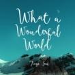 Tiago Iorc What a Wonderful World
