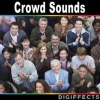 Digiffects Sound Effects Library Calm Spectators Outdoors on Bleachers