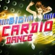 Ultimate Dance Hits&Ultimate Fitness Playlist Power Workout Trax Big Cardio Dance