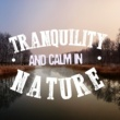 Tranquil Music Sounds of Nature,Forest Sounds Relaxing Spa Music Singing Birds&Healing Sounds for Deep Sleep and Relaxation Tranqulity and Calm in Nature