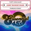 "Johnny ""Big Moose"" Walker Puppy Howl Blues / Rambling Woman (Digital 45)"