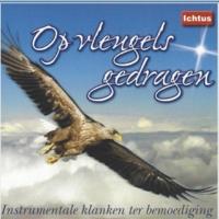 Johan Bredewout&André van Vliet Als ik het wond're kruis aanschouw