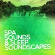 Various Artists Spa Sounds & Sleep Soundscapes