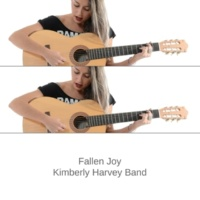 Kimberly Harvey Band Unusual Zinc