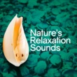 Nature Sounds,Sleep Sounds of Nature&Sounds of Nature for Deep Sleep and Relaxation Nature's Relaxation Sounds
