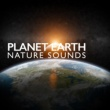 Deep Sleep Nature Sounds Planet Earth: Nature Sounds