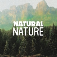 Nature Sounds Nature Music Natural Waters