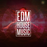 EDM Dance Music Data Overload