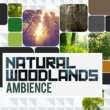 Ambiance nature Natural Woodlands: Ambience