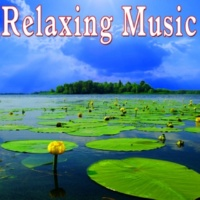Music for Meditation and Relaxation Kind Reflections (Relaxed)