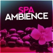 Various Artists Spa Ambience: Mindful Nature, Relaxation in the Wild, Peaceful & Natural, Zen Soundscapes