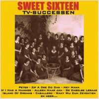 Sweet Sixteen Tune: When You Were Sweet Sixteen