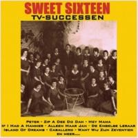 Sweet Sixteen Tous les garcons et les filles