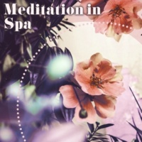 Meditation Spa Society Optimistic
