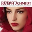 Joseph Schmidt Ein Lied Geht Um Die Welt