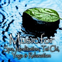 Spa Music Players Rest Easy - For Complete Relaxation and Serenity