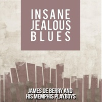 James De Berry and His Memphis Playboys Insane Jealous Blues