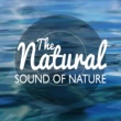 Natural Nature The Natural Sound of Nature