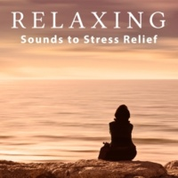 Relax Meditate Sleep Natural Music