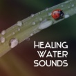 Echoes of Nature Healing Water Sounds ‐ Nature Relaxation, Soothing Waves, Calm Mind, Peaceful Sounds