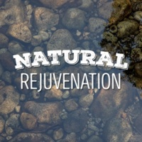 Relaxing and Healing Sounds of Nature Natural Rejuvenation