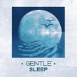 Music For Absolute Sleep Gentle Sleep ‐ Calming Nature Sounds, Music for Sleeping, Sleeping Well, Ritual Before Sleeping