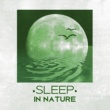 Sounds of Nature Sleep in Nature - Peaceful Sounds of Nature for Sleep, Easily Fall Asleep, Relax, Restful Sleep