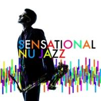 Nu Jazz Sensational Nu Jazz