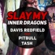 Davis Redfield  Slay My (Inner Dragons) (feat. Tash & Pitbull)[Radio Edit]
