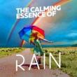Calming Rain Sounds