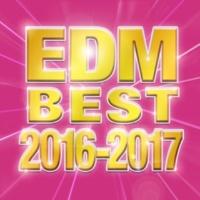 V.A. EDM BEST 2016-2017