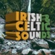 Paul Curtis Tale of the Celtic Warrior